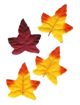 Decoration Leaves Stock Photo
