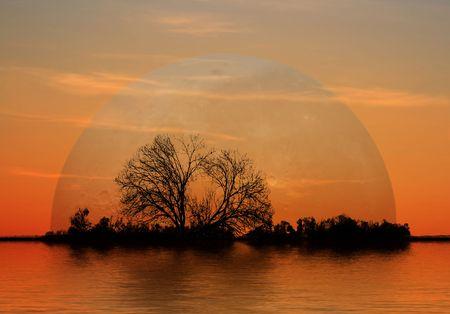 moonrise: Moonrise at Evening