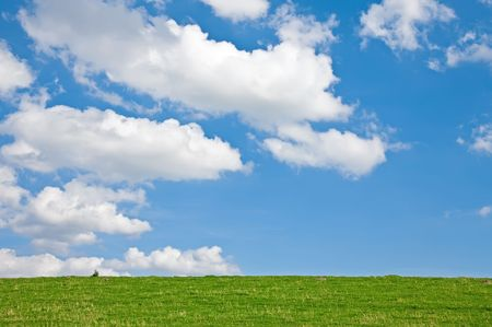 Meadow with Clouds