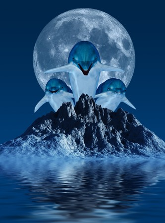 moon fish: Dolphins with Moon
