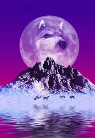 Wolves Banco de Imagens