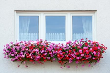 Flower Window with geranium Stock Photo