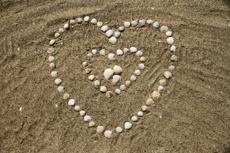 Seashells on the sand in the form of heart photo