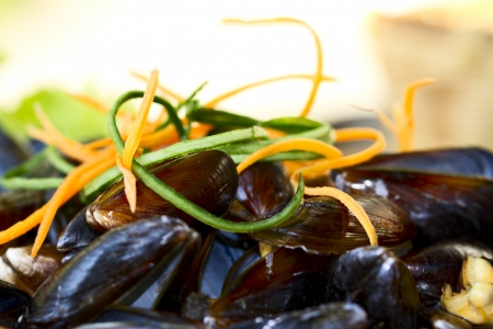 Delicious dish with mussels photo