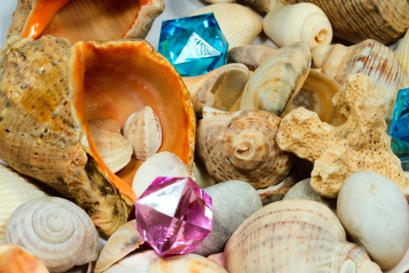 exotism: Several different shells and colorful glass pebbles Stock Photo