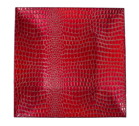 concave: Background of red lacquering crocodile. Concave shape.