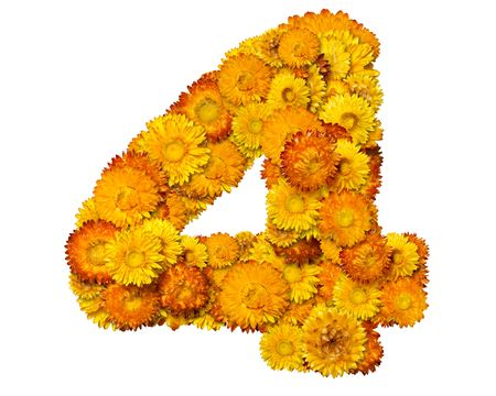 clippng: Number from alphabet from yellow and orange flowers. Isolated on white background. With
