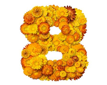 clippng: Number from alphabet from yellow and orange flowers. Isolated on white background.