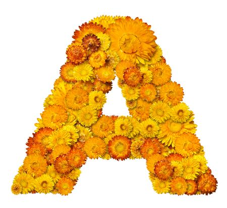 Letters from alphabet from yellow and orange flowers. Isolated on white background