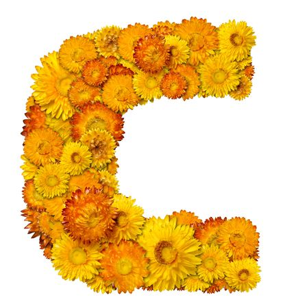 Letters from alphabet from yellow and orange flowers. Isolated on white background. Stock Photo - 6258063