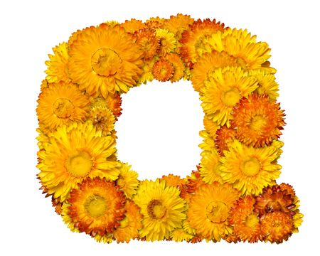 clippng: Letters from alphabet from yellow and orange flowers. Isolated on white background. With