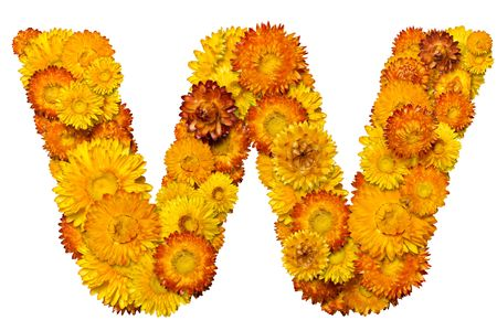 clippng: Letters from alphabet from yellow and orange flowers. Isolated on white background.