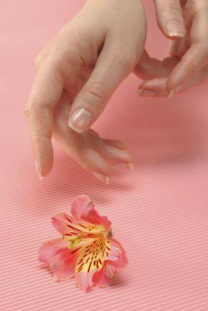 Closeup image of beautiful woman hand and flower photo
