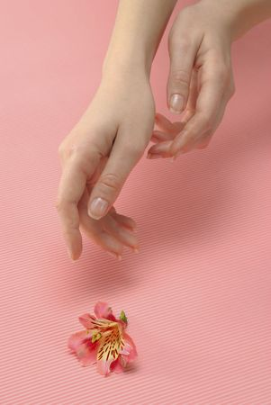 Closeup image of beautiful woman hand and flower photo
