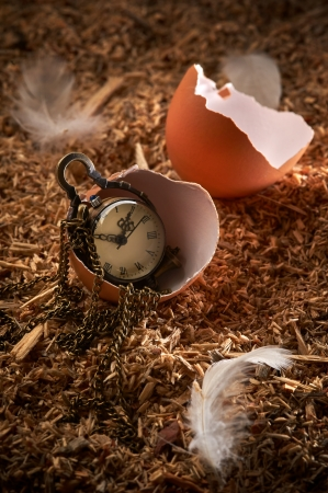 Small vintage clock in broken egg laying on sawdust and feathers photo