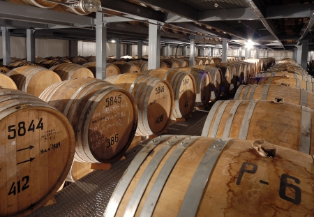 Rows of wooden cognac barrels in cellar Stock Photo