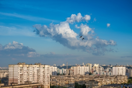 Sunset with cumulonimbus clouds on blue sky in cityscape  Two swallows flying over cloud  Kiev, Ukraine