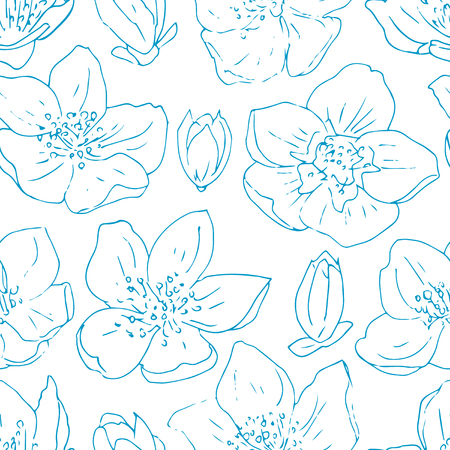 Tender seamless pattern of the jasmine flowers. Seamless Floral Pattern.  Summer and Spring. Vector sketch botanical seamless with hand drawn flower in vintage style
