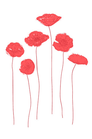 Abstract red poppies on a white background.  Vector illustration Illustration