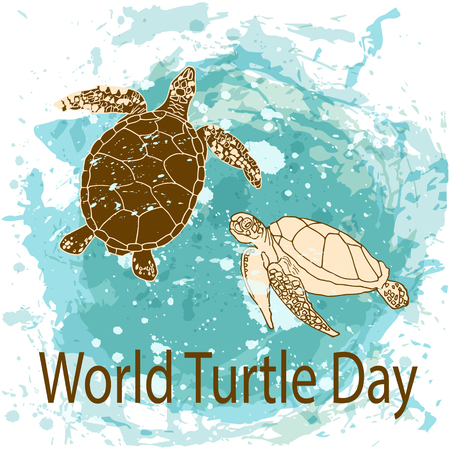 World Turtle Day 23 May background. Vector illustration 矢量图像