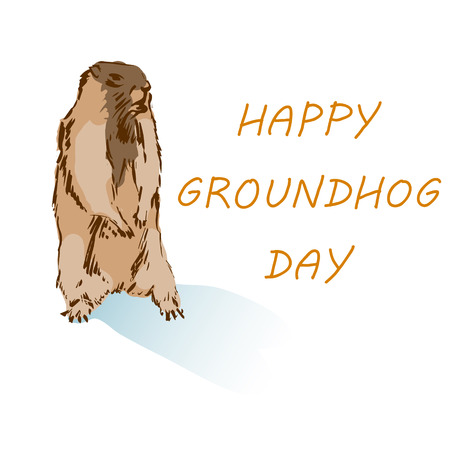 Happy Groundhog Day. Cute Groundhog with shadow. Vector cartoon illustration