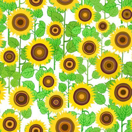 Seamless pattern of plants sunflower on white.  Summer seamless pattern with mess from sunflower. Summer harvest. Design for textile, fabric,  packaging, wallpaper. Imagens - 126176457
