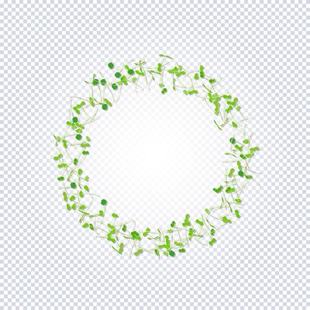 Group of young sprouts seedlings on arranged in a circle a transparent background. Raw sprouts, microgreens, healthy eating concept. Vector illustration