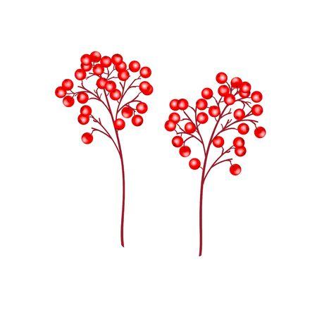 Realistische Niederlassungen mit roten Beeren der Stechpalme lokalisiert auf weißem Hintergrund. Weihnachten Hintergrund. Vektor-Illustration für Urlaubsdesigns, Party, Geburtstag, Einladung.