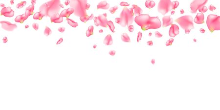 Horizontal pattern of realistic sakura flower petals. Falling pink sakura petals on white background. Vector background with spring cherry blossom for valentines day, wedding, birthday Ilustração