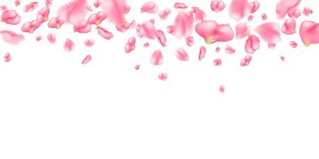 Horizontales Muster von realistischen Sakura-Blütenblättern. Fallende rosa Kirschblüte-Blumenblätter auf weißem Hintergrund. Vektorhintergrund mit Frühlingskirschblüte für Valentinstag, Hochzeit, Geburtstag