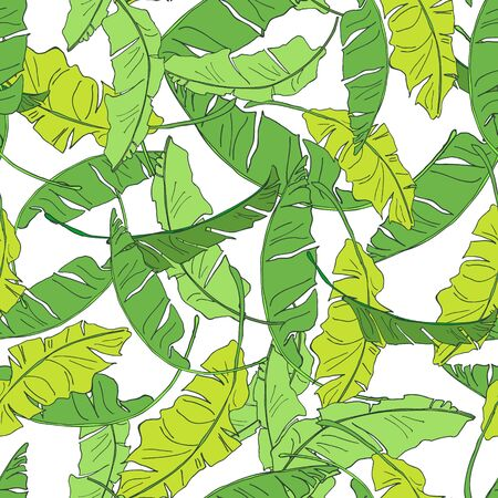 Green banana leaves isolated on white background. Hand drawn tropical banana leaves seamless pattern. Perfect for textile, wallpapers, web page backgrounds. Vector Иллюстрация