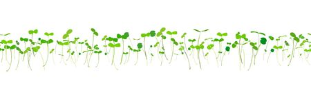 Seamless pattern young leaves seedlings on a white background. Raw sprouts, microgreens, healthy eating concept. Vector illustration Иллюстрация