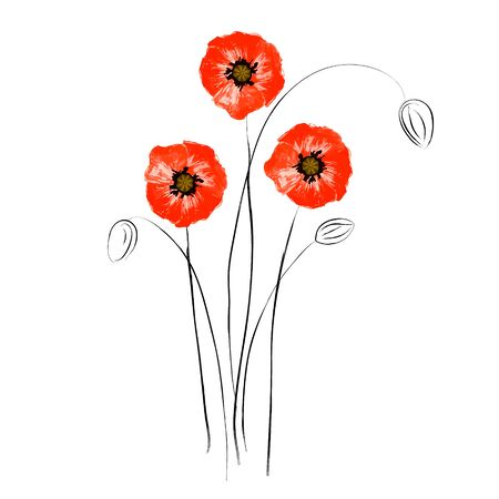 Abstract grunge red poppies isolated on white background.  Bright flowers poppies perfect fit for design cover, wallpaper, wrapping, card. Vector Illustration