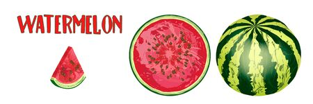 Realistic ripe whole watermelon, circle of ripe watermelon on white background. National Watermelon Day Design. Ideal for the design of packaging materials, organic farm products. Vector