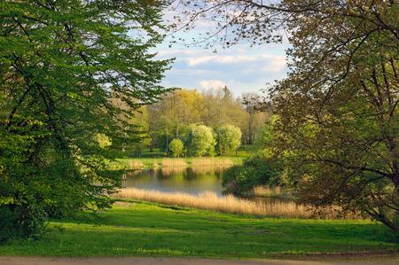 Spring landscape of Belovezhsky park