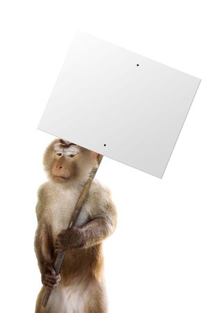 Monkey holding a sign with whatever you want! Stock Photo - 407003