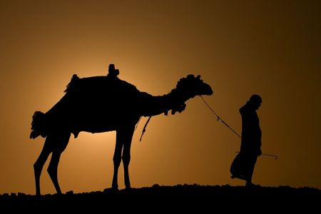 A silhoutte of a dromedary and bedouin Stock Photo - 593479