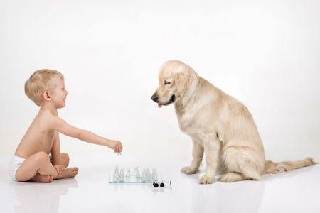 ni�o sin camisa: Un ni�o jugando ajedrez con golden retriever Foto de archivo