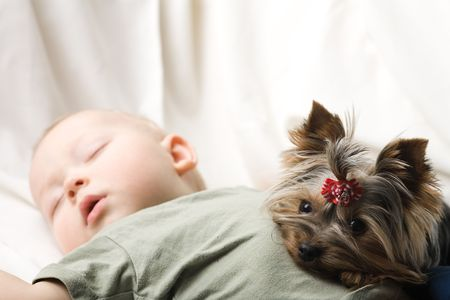 of the sleeping baby with a terrier
