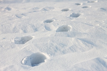 snowbank: footprints on snow at sunset Stock Photo