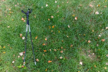 trekking pole: trekking pole on the green grass with autumn leaves lay
