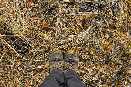 hiking boot: Top view of a hiking boot on the grass and autumn foliage.