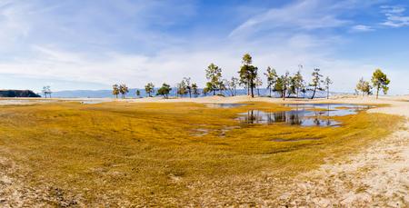 Swamps of the Saray Bay on the island of Olkhon Baikal. Stok Fotoğraf