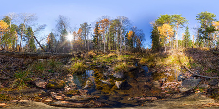 Spherical panorama 360 degrees 180 river stream in the forest and a fallen tree. vr content.