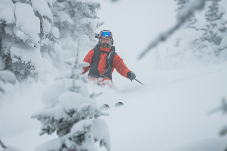Skier freerider rides from powder snow on background of forest and mountains