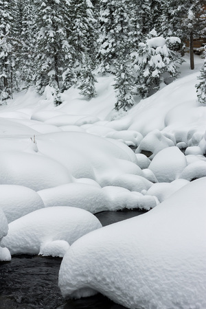 powder snowdrifts on the stones of mountain river and forest snowfall.