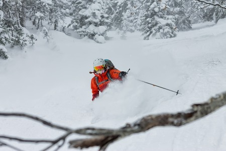 Woman skier free rider goes down on powder snow in the mountains in a snowfall Reklamní fotografie