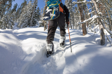 Asian man snowboarder freeride in snowshoes rises uphill in winter on snow.