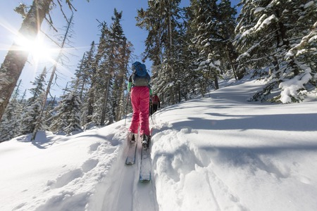 Woman skier freeride skitur uphill in snow in winter forest.