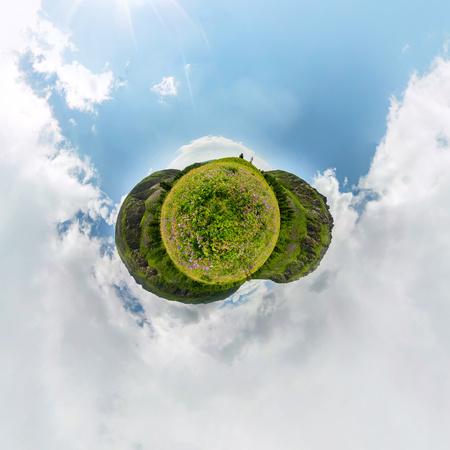 Gebied van wilgenthee op een bewolkte dag. Bolvormig 360-graden vr-panorama. Tiny planet 360vr panorama